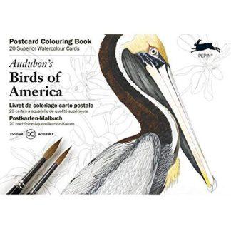 amerika madarai felnőtt színező könyv