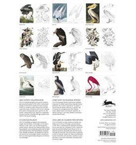 Audubons amerika madarai A3-as felnőtt színező könyv